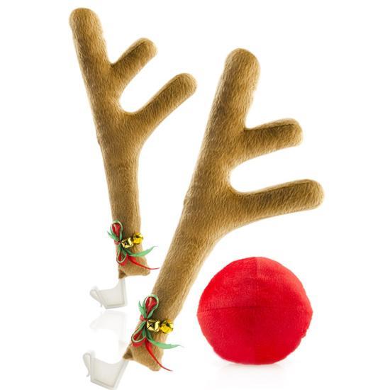 Set Rudolf pentru masina
